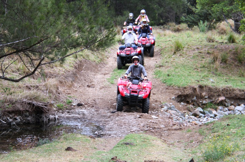 Australian Wilderness Tours Mount Seaview